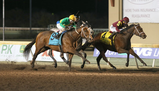 Remington Park Total Handle Continues Upward Trend