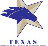 Voting Now Open for Texas Champion Claimer Award