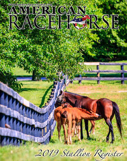 2019 American Racehorse Stallion Register Now Online