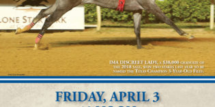 Record Number of Entries in Texas 2-Year-Olds in Training Sale, New Incentives Announced