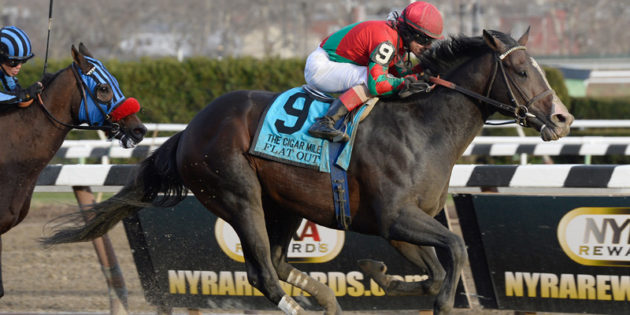 Multiple Grade 1 Winner Flat Out to Stand at Mighty Acres in Oklahoma