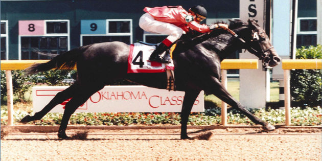 Shooting Star from Oklahoma Horse Racing Hall of Fame Fades, 27-Year-Old Highland Ice Passes Away