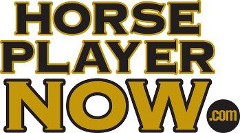 Horseplayernow logo