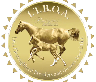 ITBOA Online Stallion Season Auction Underway