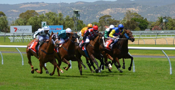 Australian Derby 2021 Fact | Field, Tips, Odds & Form