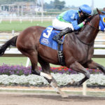 Big Kick Wins First Claiming Crown Preview Race at Indiana Grand