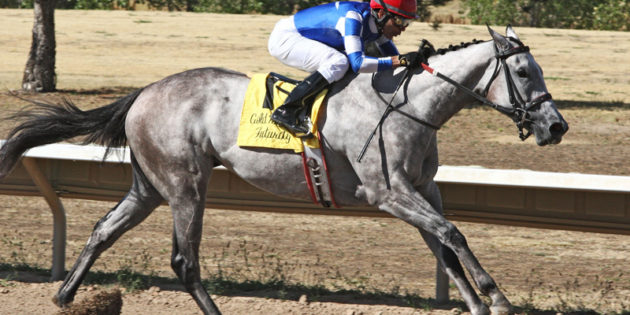 Texas-bred Bling On the Music Makes History in the $100,000 Gold Rush Futurity at Arapahoe Park