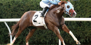 Indiana-bred Bucchero Wins Grade 2 Woodford Stakes at Keeneland