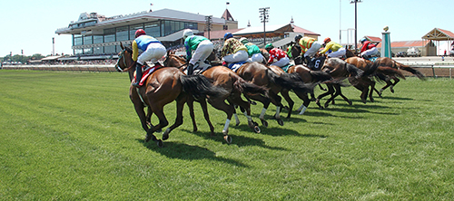 Canterbury Park (Photo by Coady Photography)