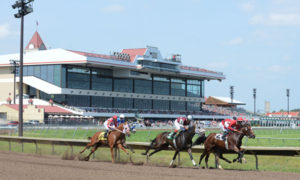 Minnesota Racing Commission Pays out Record Breeders' Fund Awards Thanks to New ADW Legislation