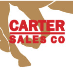 Tactical Cat Filly Tops Carter Sale in OKC, Gross Sales Increase