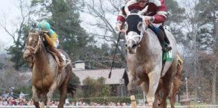 Iowa-bred Chanel's Legacy Captures Martha Washington Stakes at Oaklawn