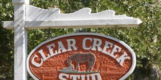 Clear Creek Stud to Host Annual Stallion Presentation On December 3