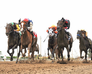 Smack Smack (red cap) defeats Oklahoma-bred Shotgun Kowboy (black cap) in the Prairie Meadows Cornhusker Handicap. (Photo by Coady Photography)