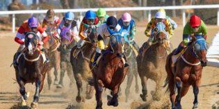 Best Horse Races in the US