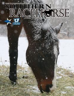 Southern Racehorse - November/December 2012