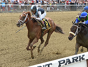 Curalina named the 2015 Aiken Trained Horse of the Year