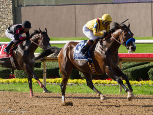 Cyrus Alexander defeats Shotgun Kowboy to win the Lone Star Park Handicap (Photo by Mary Cage)