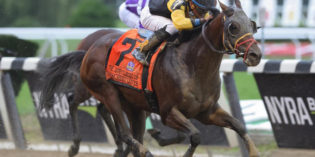 Grade 1 Winner and Millionaire Discreet Lover Retired to Stand at R Star Stallions in Indiana