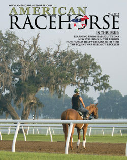 New Issue of American Racehorse Online with Articles about Equine War Hero Sgt. Reckless, Man O' War Project, New Stallions and More