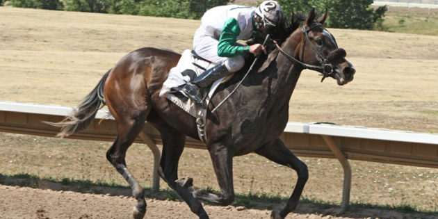 "Arapahoe Park Set to Finish Meet on a ""High"" Note"