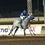 Springboard Mile Winner Greyvitos Voted Remington Horse of the Meeting