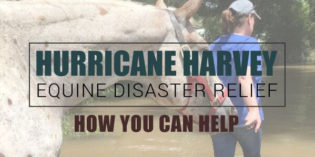 How You Can Help the Victims of Hurricane Harvey