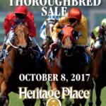 Heritage Place Thoroughbred Sale Records Across the Board Gains