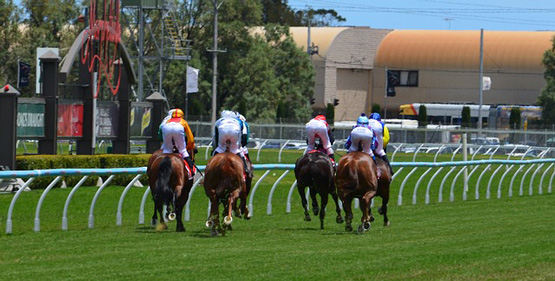 Your Guide to Attend The Oakleigh Plate Horse Race