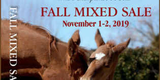 Heritage Place Fall Winter Mixed Sale Catalog Online