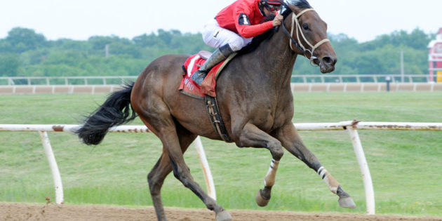 Hyper Drive Wins Cherokee Nation Classic Cup at Will Rogers Downs