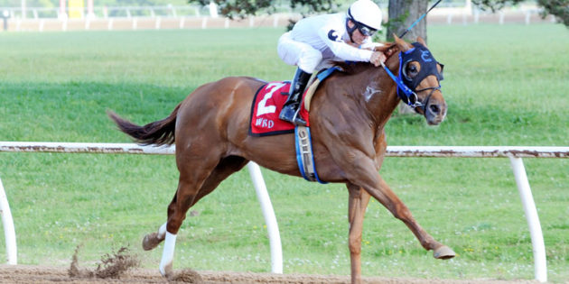 Inagoodway Gets First Black-Type Win in More Than Even Stakes at Will Rogers Downs