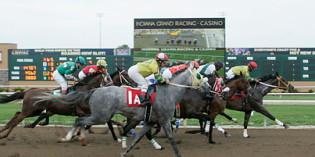 Purse Increase Reflected in First Condition Book for Indiana Grand Meet