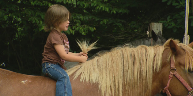 New WTIU Documentary Explores the Story of Horses in Indiana