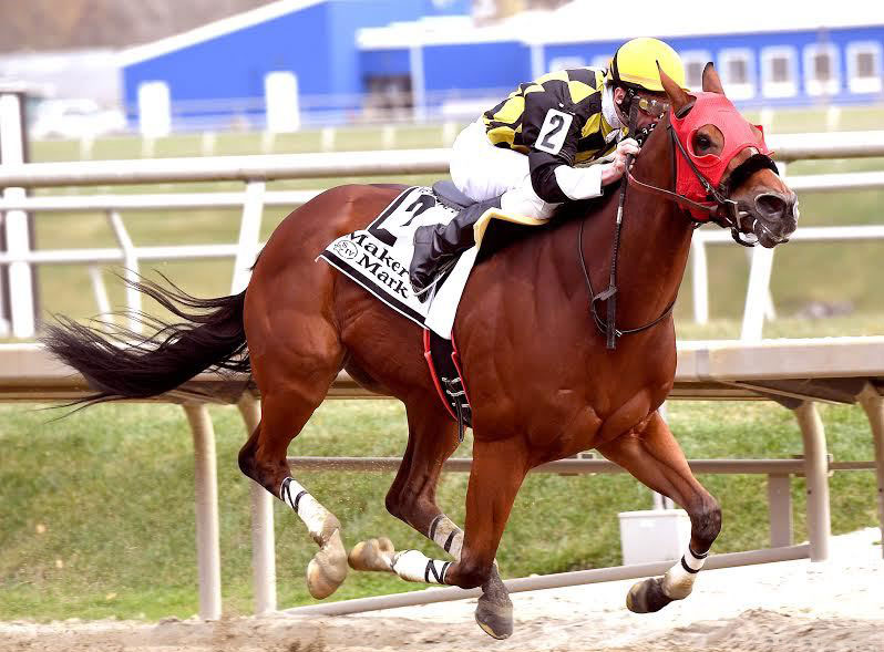 Ivan Fallunovalot (Photo courtesy Maryland Jockey Club)