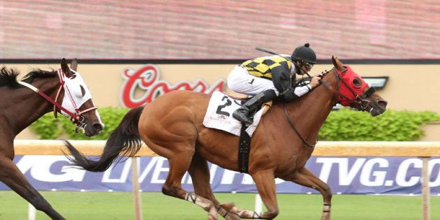 Top Sprinter Ivan Fallunovalot Returns to Action at Remington Park