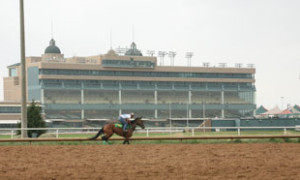 Lone Star Park Meet Concludes with Record Increases