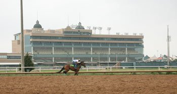 Lone Star Park Records Big Jump in Handle for Thoroughbred Meet