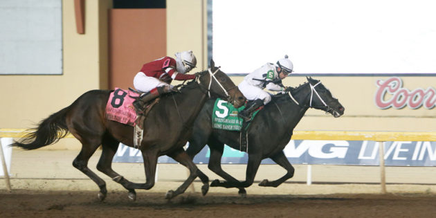 Longshot Long Range Toddy Takes $400,000 Springboard Mile at Remington