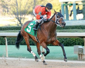 Marquee Miss (Photo by Coady Photography)