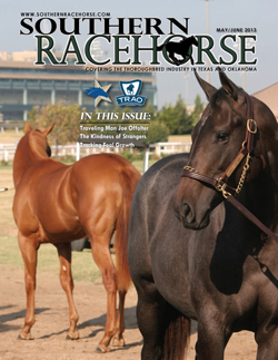 Southern Racehorse