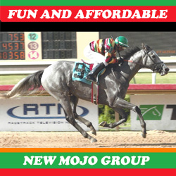 Mojo Racing Partners