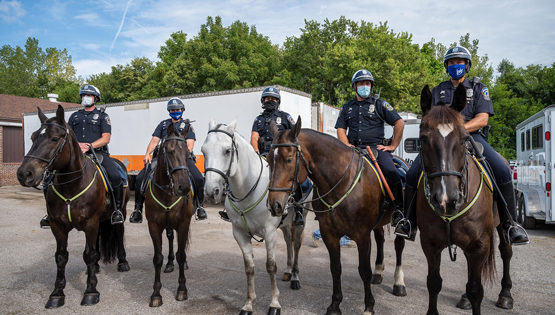 Harrah's Hoosier Park and Indiana Grand Donate $50,000 to IMPD Mounted Patrol Unit