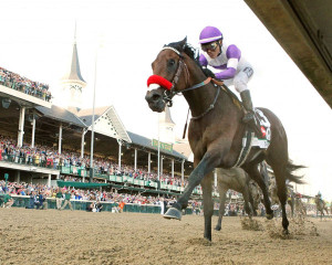 Kentucky Derby winner Nyquest is expected to ship to Pimlico on Monday for the Preakness Stakes (Photo by Coady Photography)