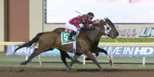 Okie Ride, Hallelujah Hit, Sweet Posse Win Oklahoma-bred Stakes at Remington