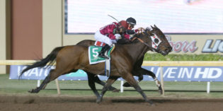Remington Park Star Okie Ride Passes Away