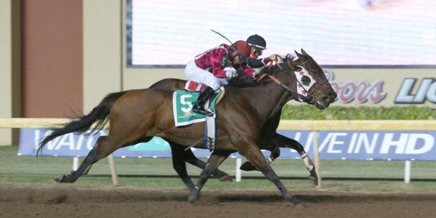 Remington Park Star Okie Ride Passes Away