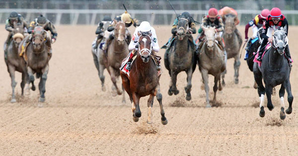 One Liner Remains Perfect with Southwest Stakes Score