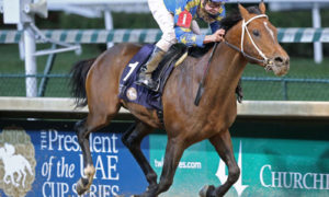 Texas-bred Arabian Paddys Day Wins Emirates Cup at Churchill Downs with Calvin Borel Aboard