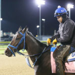 Texas-bred Patrona Margarita Breezes in Preparation for Grade 1 Kentucky Oaks
